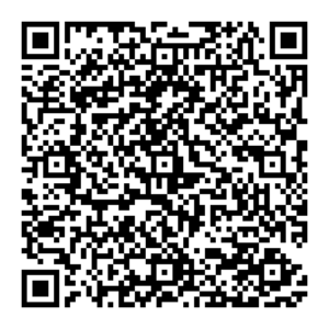 qr_code_without_logo_duhovezvonkynedele