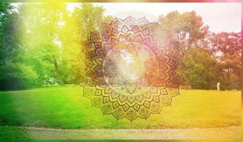 PicsArt_07-19-04.06.52